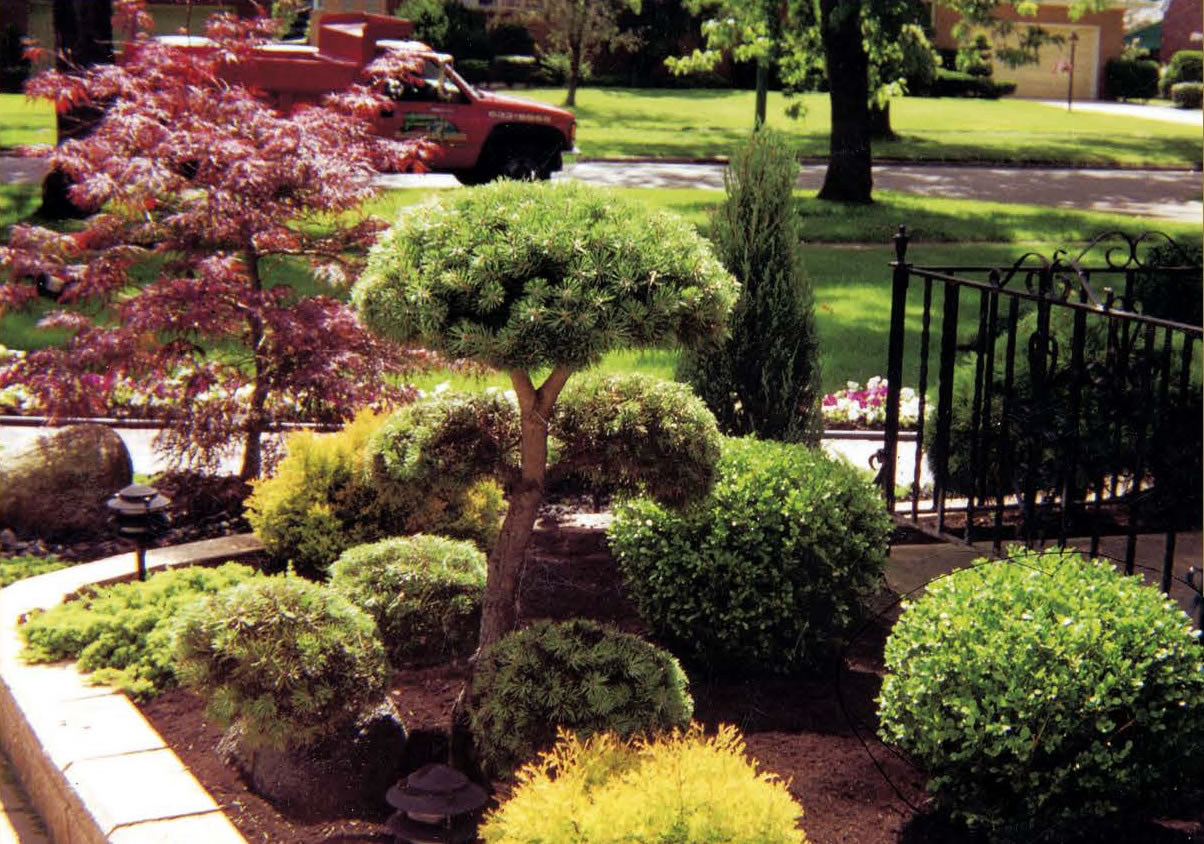 Landscaping & Landscape Design and Installation by Forever Green Landscapes