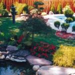 Pool & Yard Landscaping