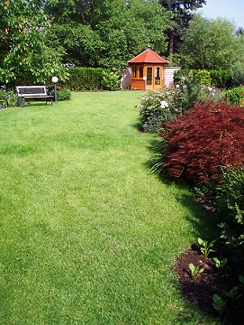 Lawn care services by forever green landscaping western for Local lawn care services